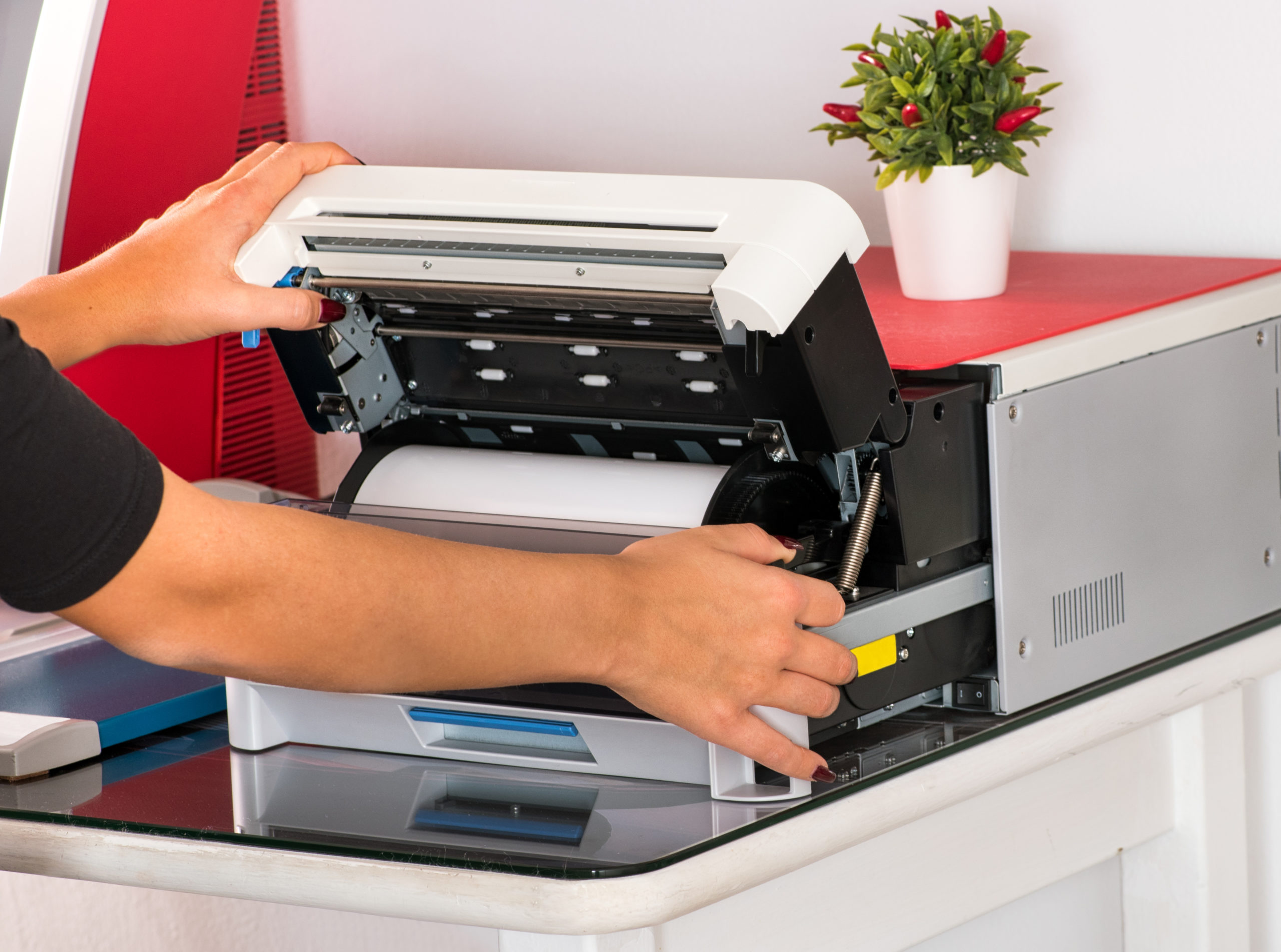 How to connect Brother printer to Mac wirelessly - https://elements.envato.com/open-a-sublimation-printer-LA8PUDQ